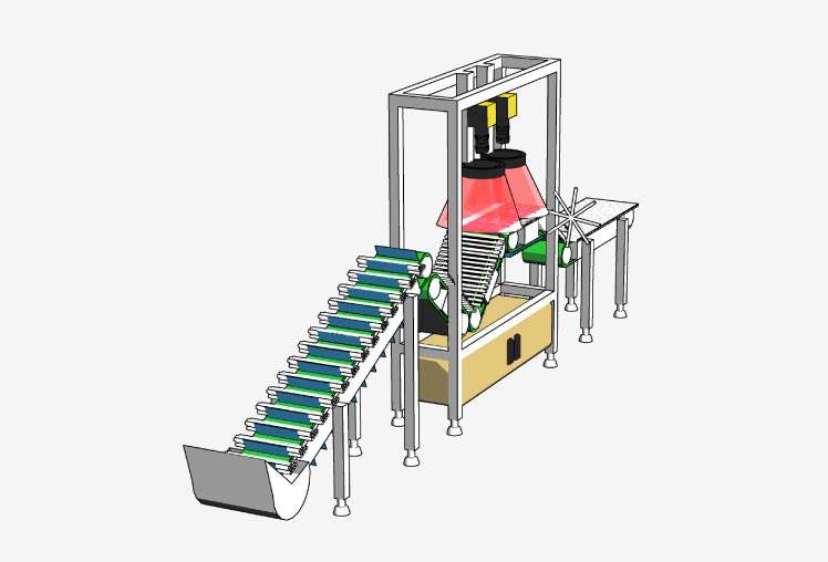 Axis image inspection machine for food