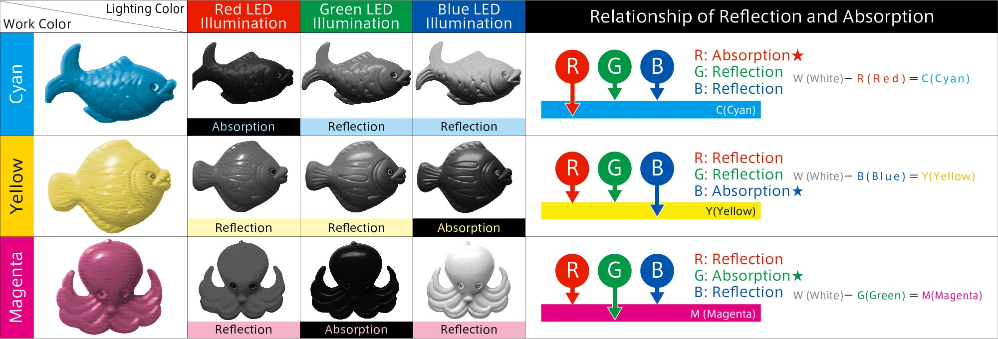 Reflection and absorption of colors