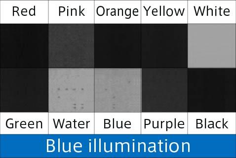 blue B irradiation