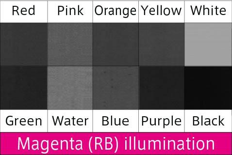 magenta M irradiation